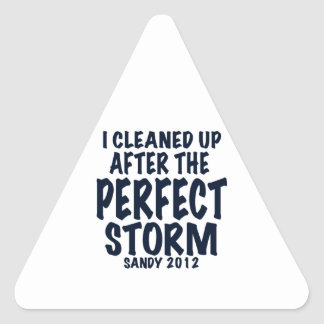 I Cleaned Up After the Perfect Storm, Sandy 2012, Triangle Sticker