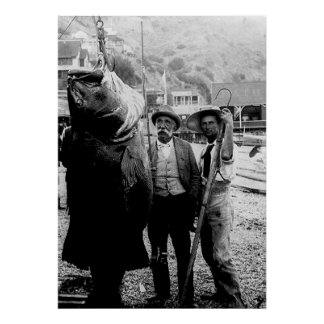 I cogió una vez un pescado esta impresión grande