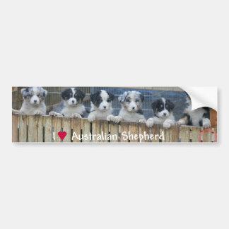 I coils Australian Shepherd Bumper Sticker