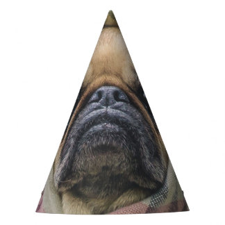 I Come in peace pug dog Party Hat