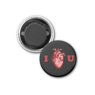 I corazón usted corazón anatómico - negro y rojo imán redondo 3 cm