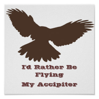 I d Rather be Flying Posters