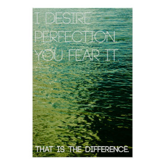 I Desire Perfection. You Fear It. Poster