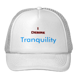 I Desire Tranquility Mesh Hats