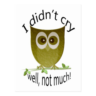 I didn t cry well not much funny cute Owl art Postcard