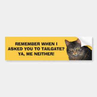 I Didn't Ask You To Tailgate - Grumpy Angel Cat Bumper Sticker