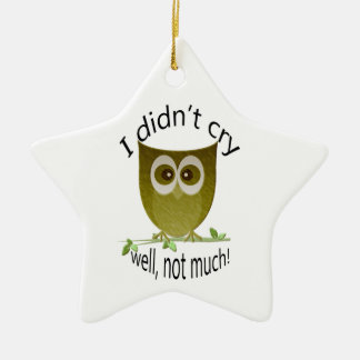 I didn't cry, well, not much! cute Owl art Ceramic Star Decoration