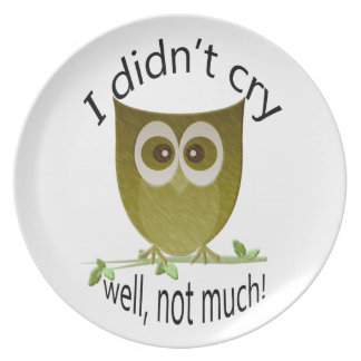 I didn't cry, well not much! Funny Owl art Plate