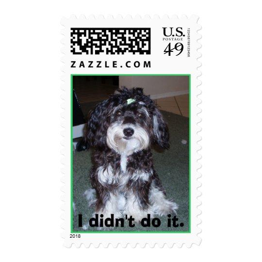 """I didn't do it"" dog stamp"