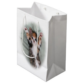 I didnt do it medium gift bag
