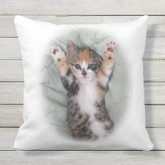 I didnt do it outdoor pillow