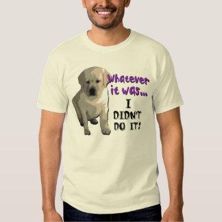 I Didn't Do It Tee Shirt