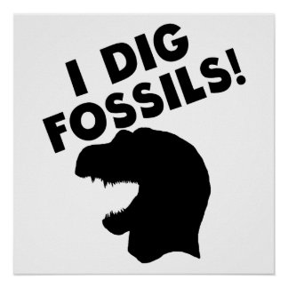 I Dig Fossils