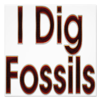 I Dig Fossils Red Art Photo