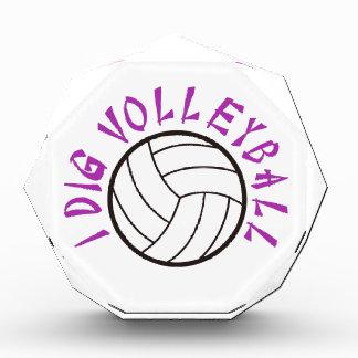 I Dig Volleyball Acrylic Award