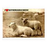 I ♥ Dithmarschen! Postal