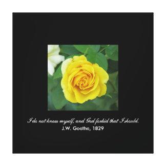 I do not know myself . . . (Goethe) Canvas Print