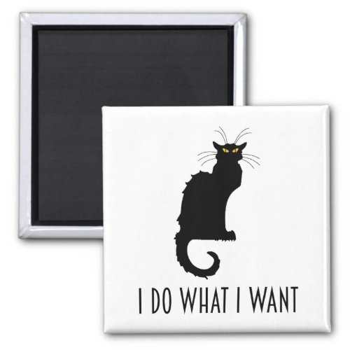 I Do What I Want Funny Cat Chat Noir Magnet