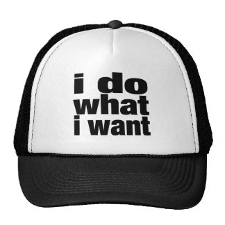 i do what i want trucker hat