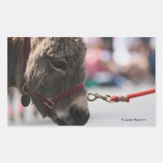I ♥ Donkeys! Rectangle Stickers
