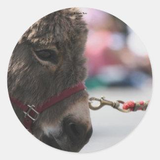 I ♥ Donkeys! Stickers