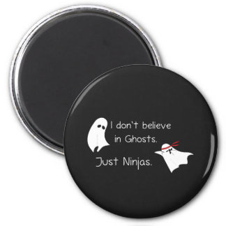 I don't believe in Ghosts. Just ninjas. Magnets