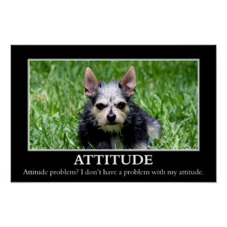 I don't have an attitude problem (L) Poster