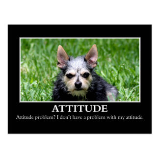I don't have an attitude problem postcard