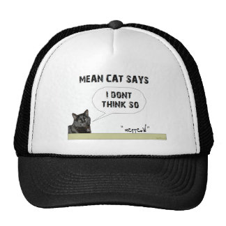 I don't think so hats