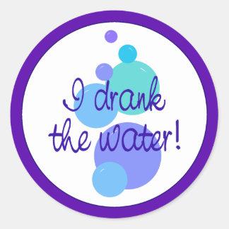 I Drank the Water Classic Round Sticker