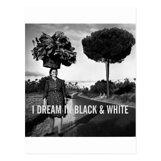 I Dream in Black & White Postcard