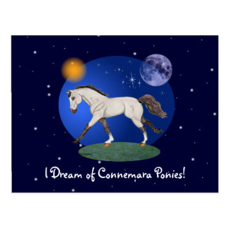 I Dream of Connemara Ponies Notecard Postcard