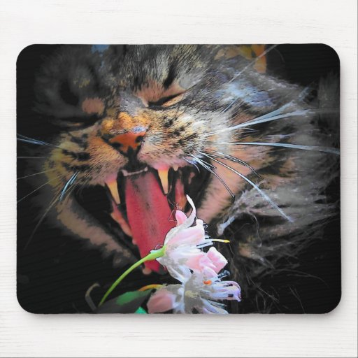 I eated your flowers mouse pad