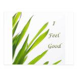 I Feel Good spa Post Cards