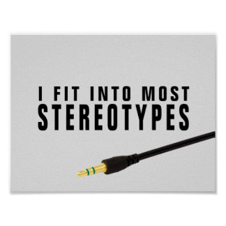 I fit into most stereotypes poster