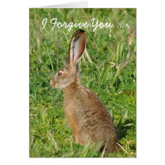 I Forgive You Jack Rabbit greeting card