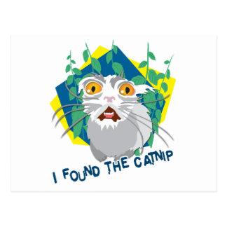 I found the catnip postcard
