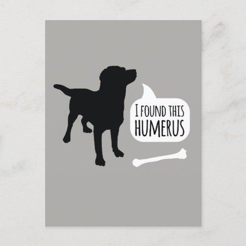 I Found This Humerus Dog with Bone Funny Postcard