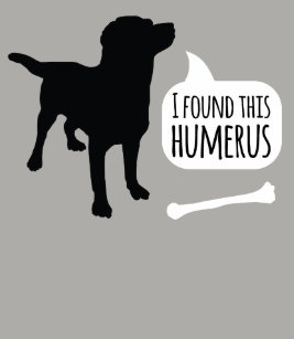 Image result for dog with a bone funny