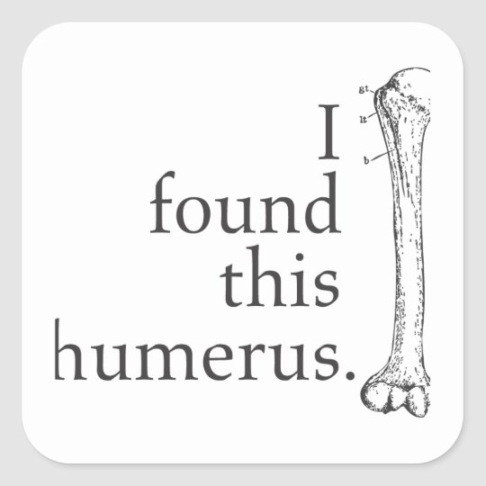 I Found This Humerus Square Sticker