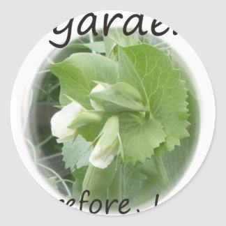 I Garden Therefore I am with pea blossom Round Stickers