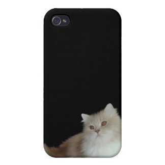 i gato blanco mullido animal iPhone 4 funda