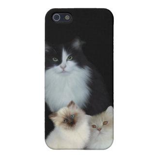 i gatos del animal tres iPhone 5 fundas