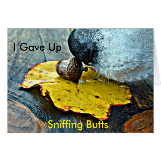 I Gave Up Sniffing Butts Christmas Card
