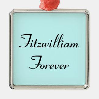 I Get to Call Mr. Darcy Fitzwilliam Austen Quote Metal Ornament