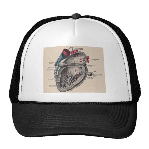 I give you my heart trucker hat