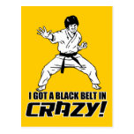 I Got A Black Belt in Crazy Post Cards