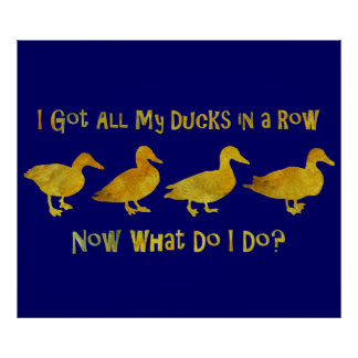 I Got All My Ducks In A Row Poster