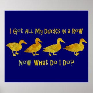 I Got All My Ducks In A Row Print