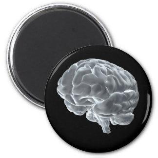 I got brains magnet
